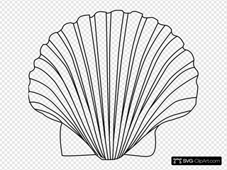 Shell  SVG Clipart