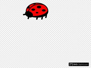 Peterm Ladybug