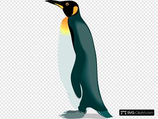 Penguin 3 Clipart