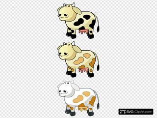 Colour Cows 3