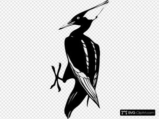 Uccello Bianco E Nero SVG Clipart