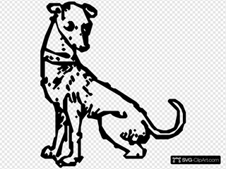 Dog 32