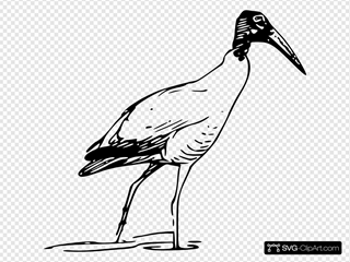Ibis Bird Walking In Lake SVG Clipart