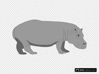 Gray Hippo