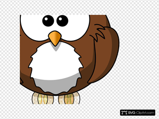 A Owl