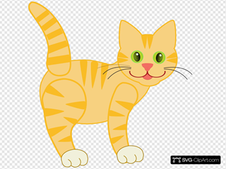 Yellow Striped Cat