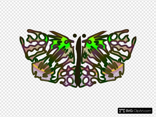 Tom Butterfly