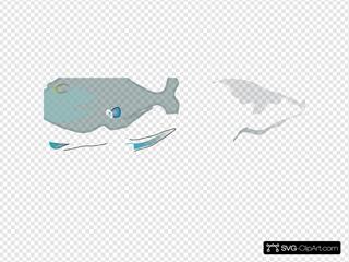 Barb Fish