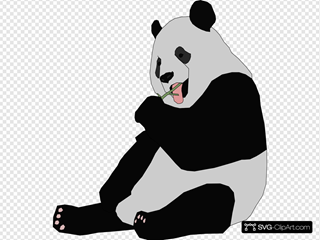 Panda 5 SVG Cliparts