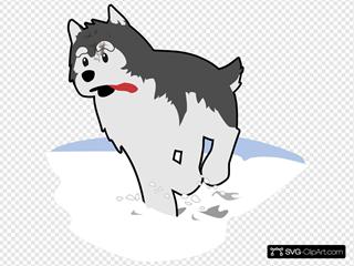 Running Husky