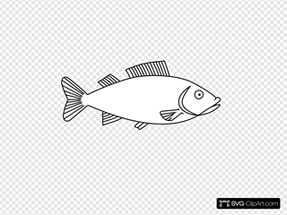 Fish Outline 3