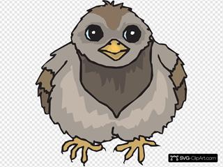 Pigeon Baby