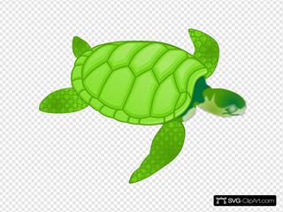 Green Sea Turtle SVG Clipart