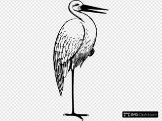 Bird Standing One Foot Clipart