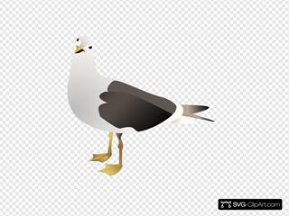 Gull SVG Clipart