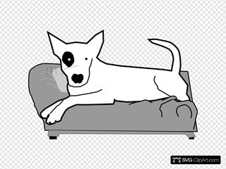Bullterrier On Couch