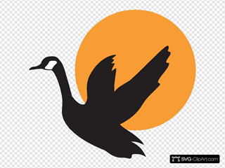Goose With Sunset Background