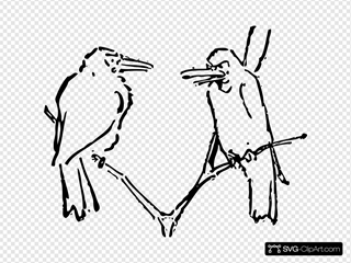 Birds Talking Tree Branch