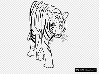 B W Tiger SVG Clipart