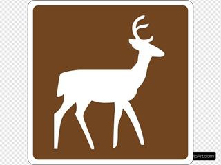 Deer Viewing Area