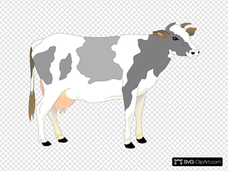 Gray And White Standing Cow