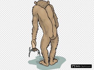 Chimp Rear