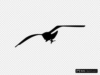 Seagull Contour SVG Clipart