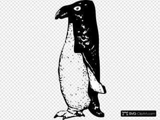 Funky Penguin Clipart