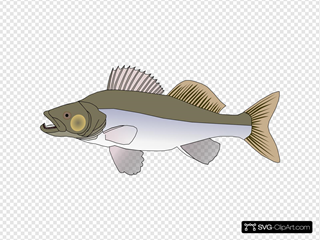 Big Fish Candat Animal SVG Clipart