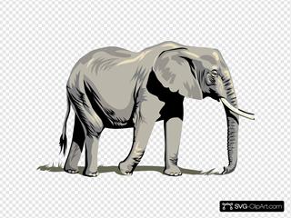 Walking Elephant Side View