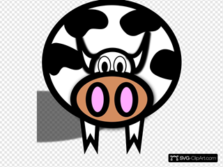 Pink Nostril Cow