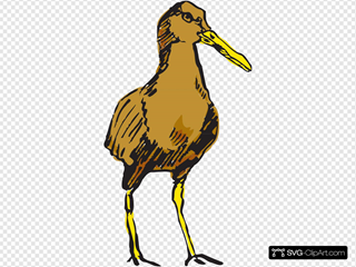 Standing Brown Bird
