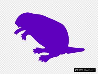 Purple Beaver