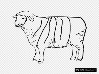 Striped Sheep