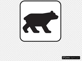 Bear Viewing White