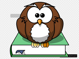 Owl & Green Book