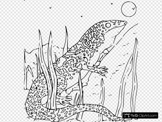 Coloring Book Monitor Gecko
