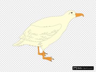 Cartoon Gull