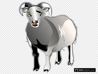 Sheep Md V