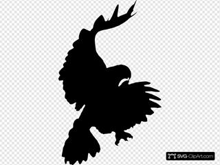 Hawk Attacking Silhouette