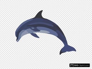 Porcbd In Bottlenose Dolphina