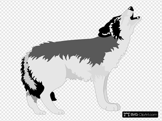 Howling Black And Gray Wolf