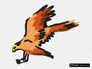 Orange And Red Bird Flying