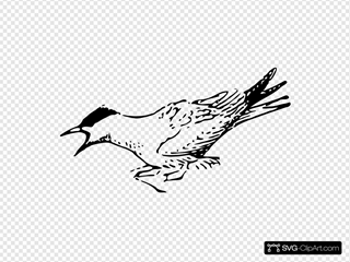 Squeeking Bird Clipart