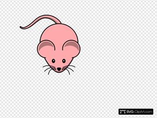 Female Mouse