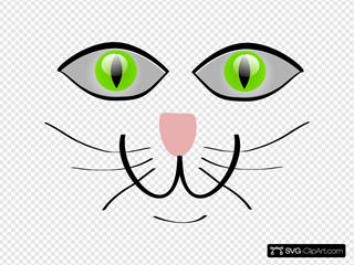 Cat Face Features
