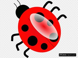 Ladybug Top View