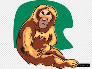 Orange Chimp