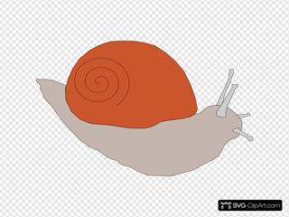 Snail 2 SVG Clipart