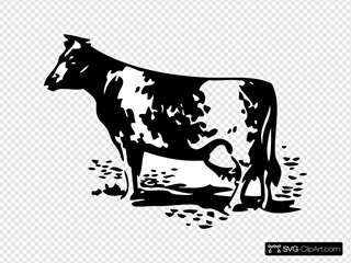 Cow Out Of Barn